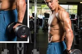想要麒麟臂关键点 4大细小臂训练方案,健身教练培训建议收藏!