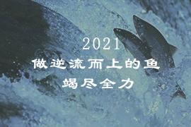 2021,做逆流而上的鱼,竭尽全力。